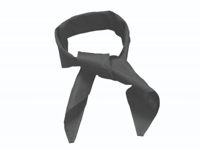 Black Neckerchief