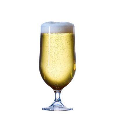 Plastic Craft Goblet Beer Glasses