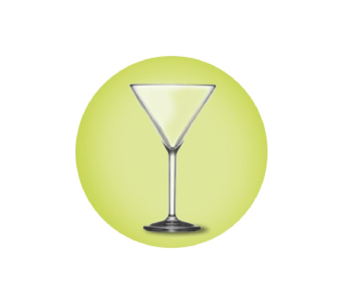 Elite Martini Glasses Polycarbonate