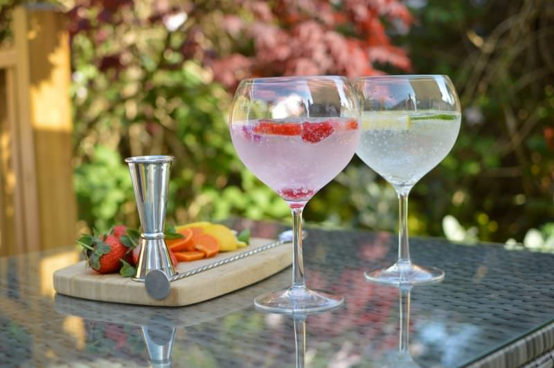 Plastic Gin Glasses - Polycarbonate  Pack of 4