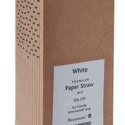 Beaumont 8″ White Paper Straws - PK250