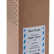 Blue & White Paper Straws