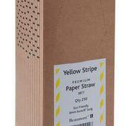 Yellow & White Paper Straws