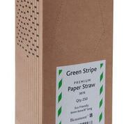 Green & White Paper Straws