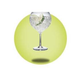 Plastic Gin Glasses & Plastic Cocktail Glasses