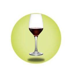 Elite - Plastic Wine Glasses
